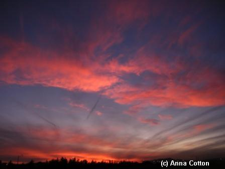 Sunset 12-11-08